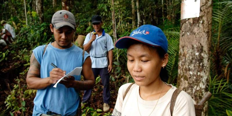People in forest measuring the effects of climate change