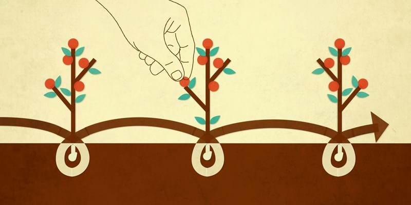 Illustration of planted seeds growing and giving fruit.