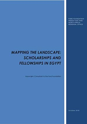 mapping the landscape fellowships in egypt