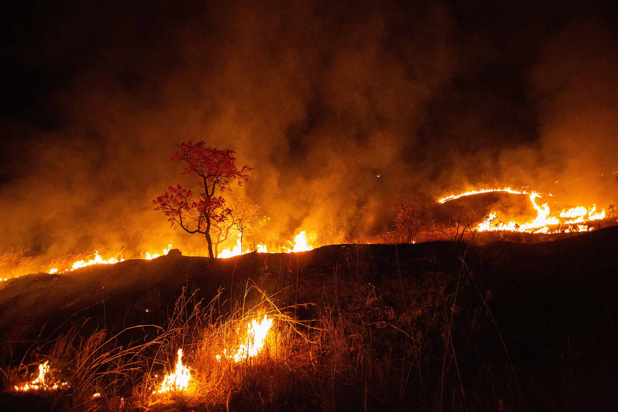 A bright orange fire burns on a hill as smoke rises on blackened earth.